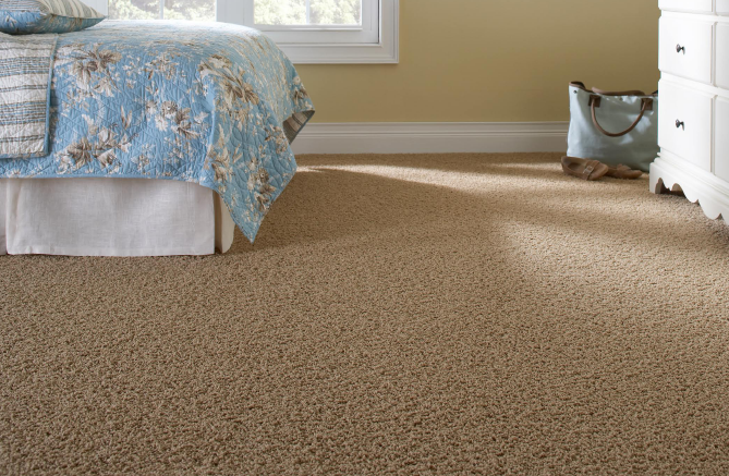 Cheap Carpet For Rentals The Gold Coast #0: Floorwerx Cheap Carpet Gold Coast 2