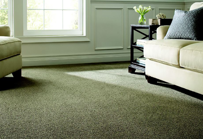 Cheap Carpet For Rental Property