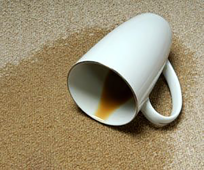 How To Remove Coffee Stains From Your Carpet Floorwerx
