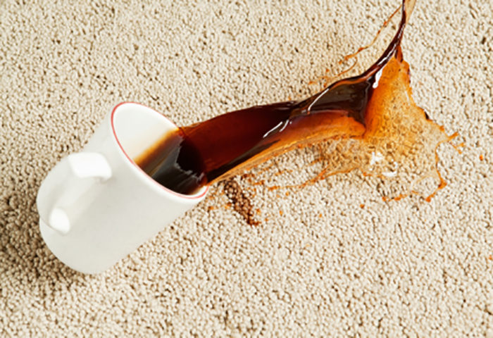 How To Remove Coffee Stains Floorwerx Gold Coast